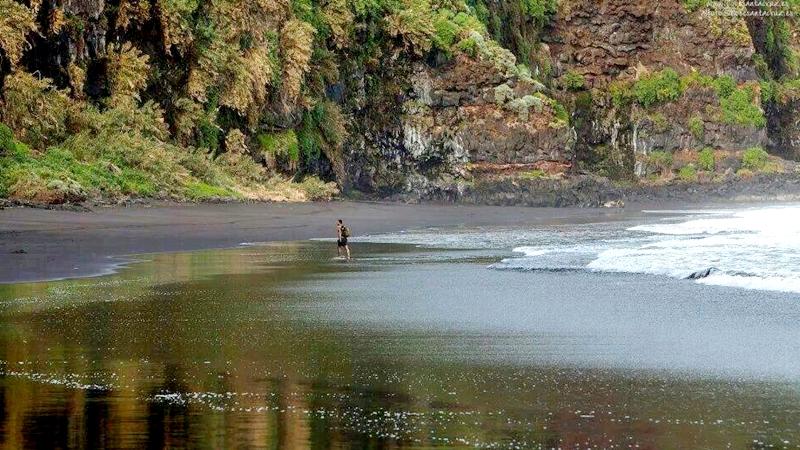 Los Nogales un lugar para ir a conocer en la Gran Canarias